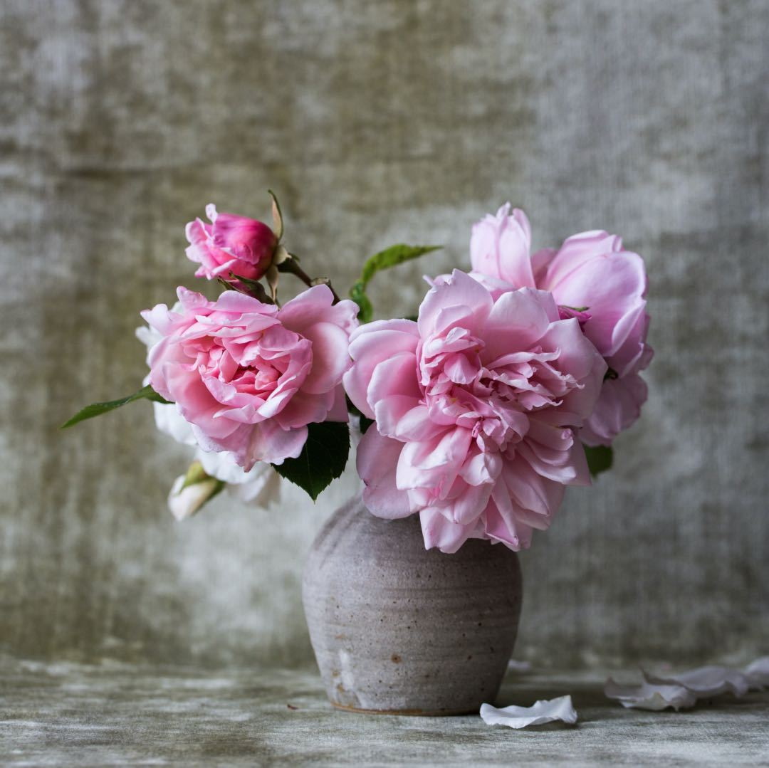 Flower Fragrance Quotes