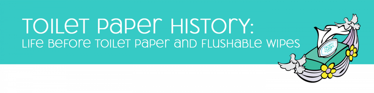 Toilet Paper History: Life Before Toilet Paper and Flushable Wipes