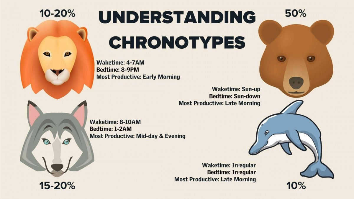 Understanding Your Chronotype for Better Performance and Sleep