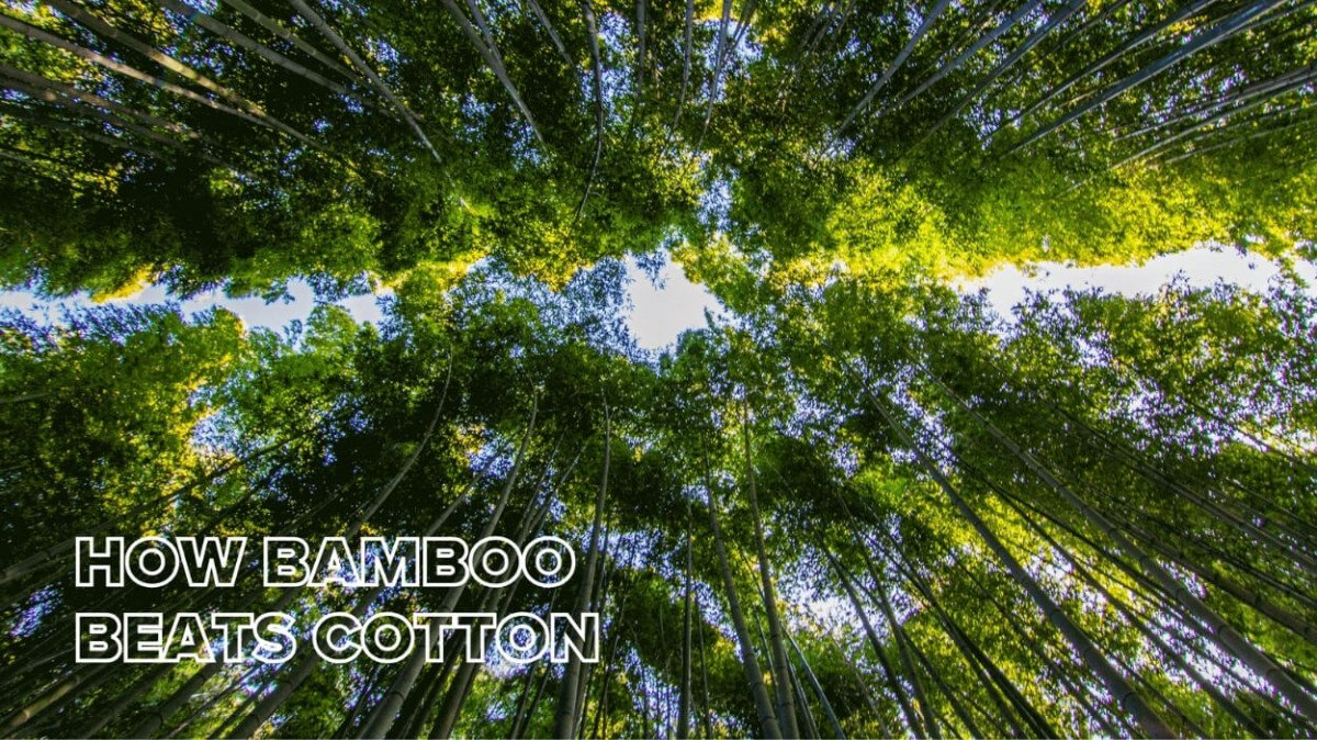 Bamboo Weighted Blanket vs Cotton: Which One is Better?