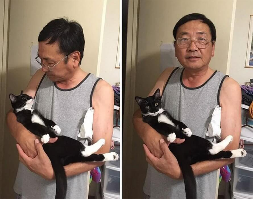cat dad