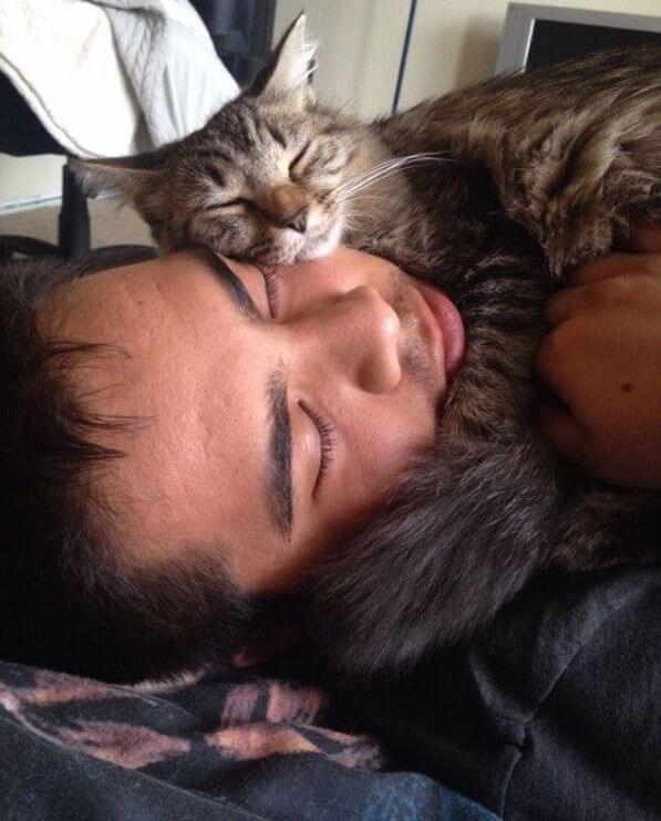 mon chat aime dormir sur moi