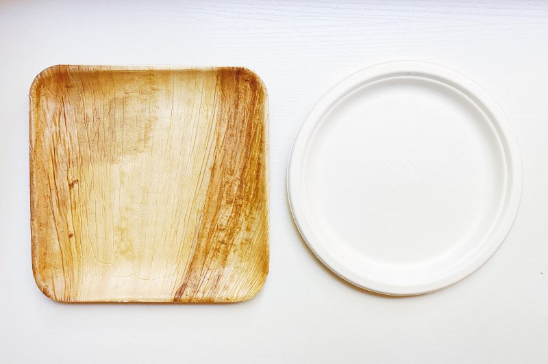 DISPOSABLE PLATES: Paper vs. Palm Leaf