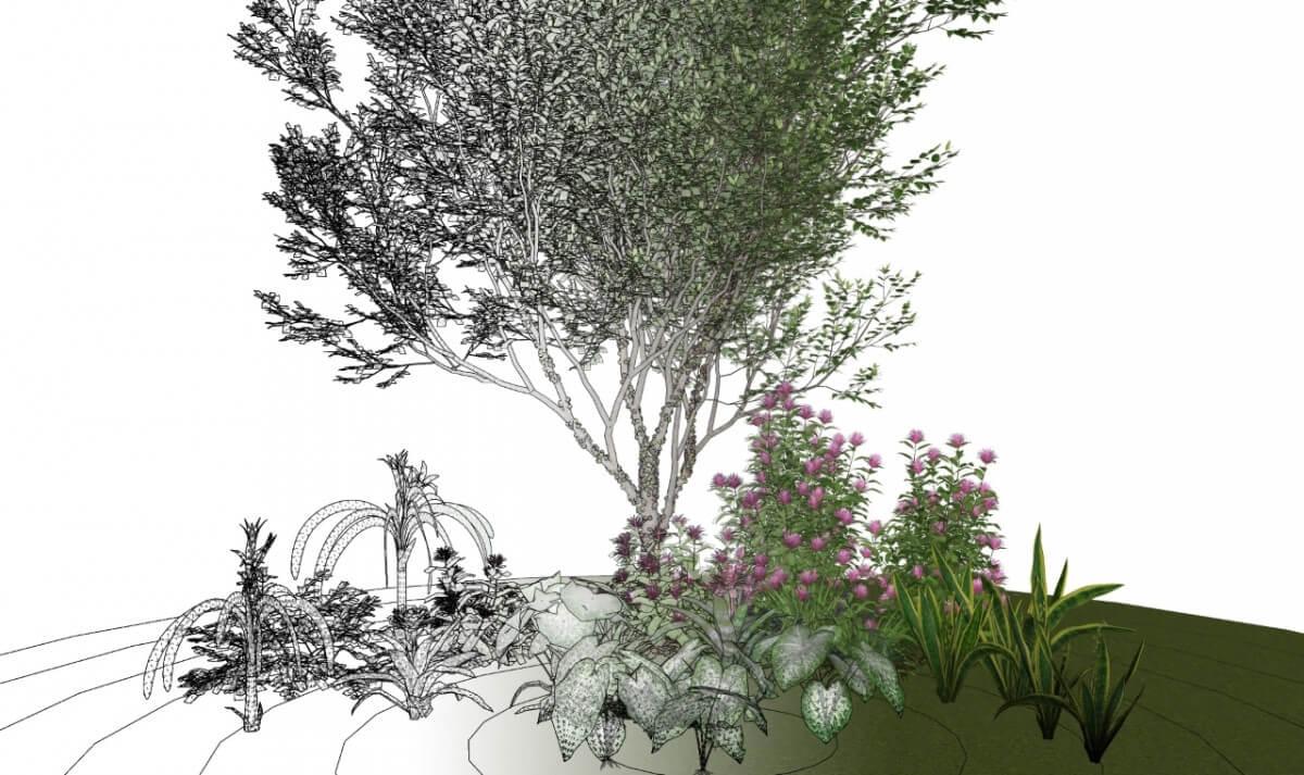 Low Polygon 3D Plant Models