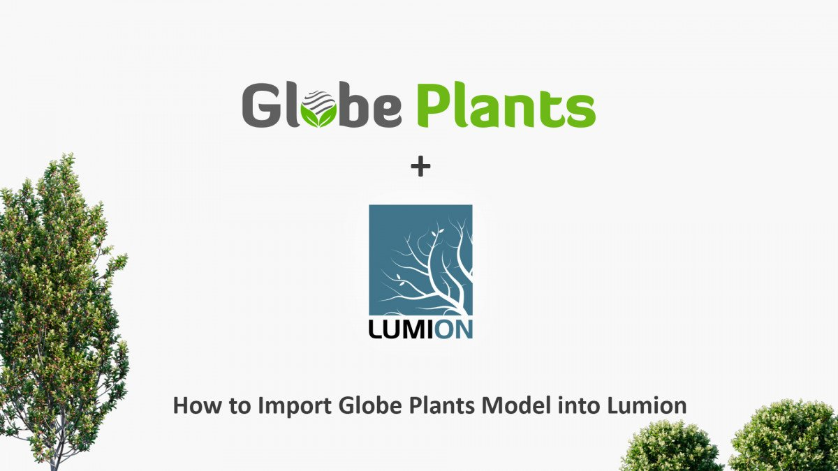 How to import Globe Plants 3D Plant model into Lumion