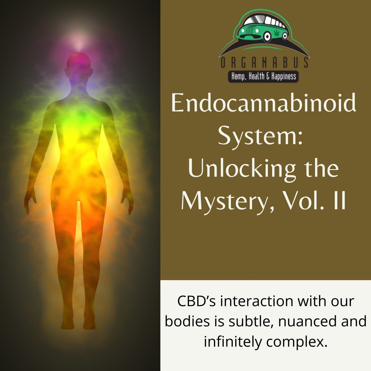 Endocannabinoid System: CBD Unlocking the Mystery, Vol. II