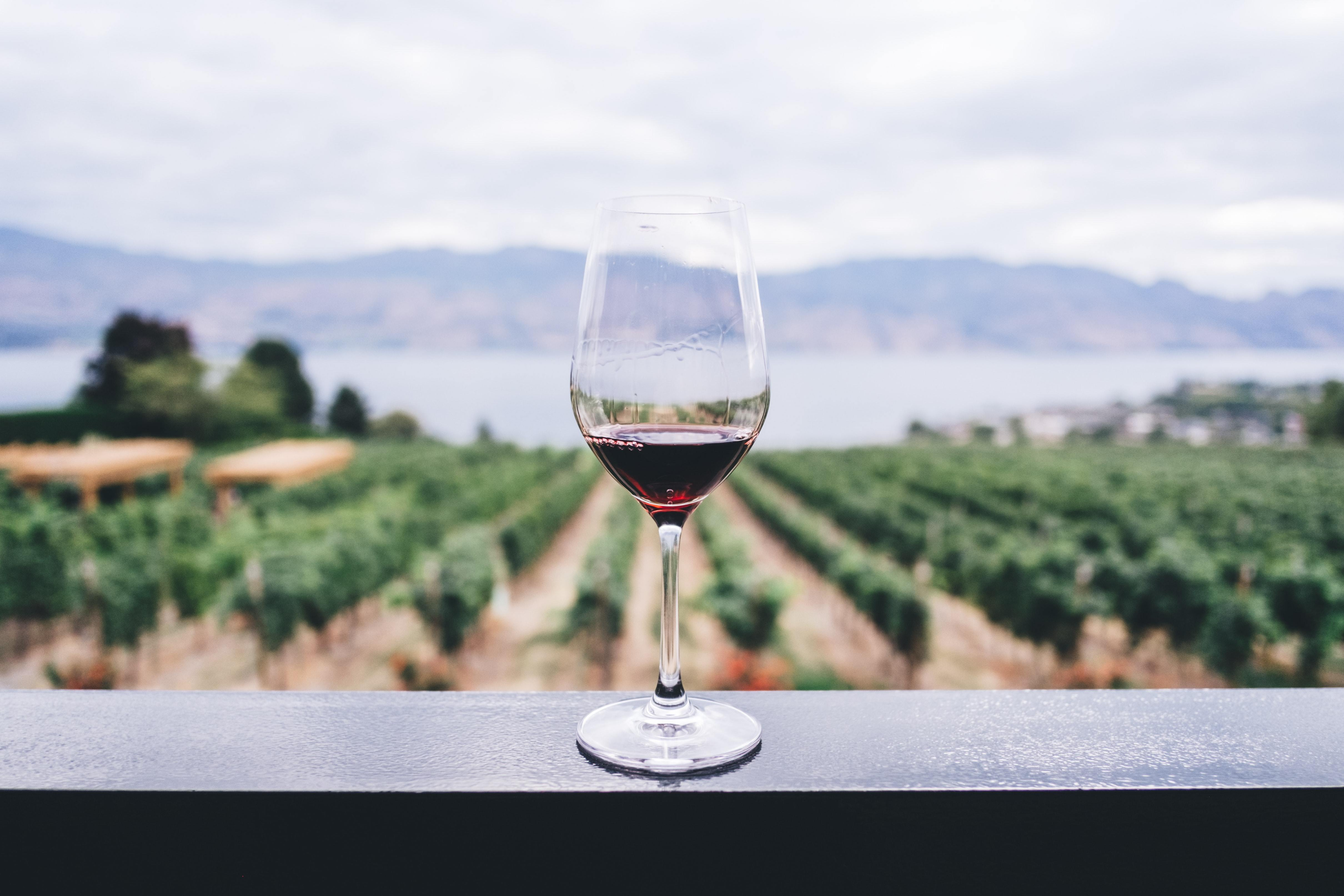 Why I Swapped my Daily Glass of Wine for CBD