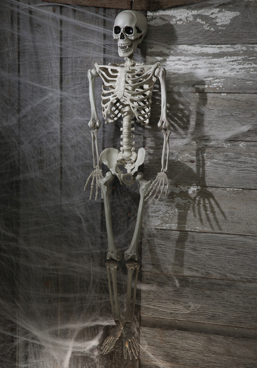 Skeleton with webs