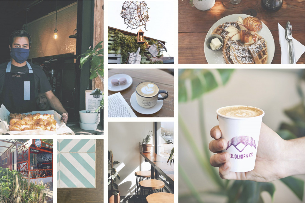 The Artesanal Best Coffee Shops in Baja - Tecate