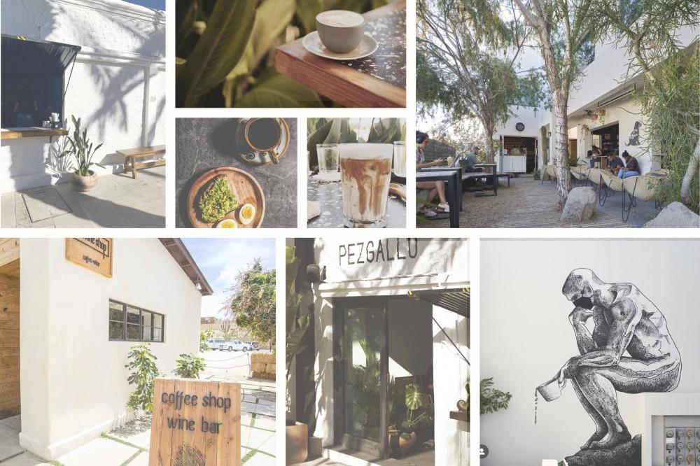 Best Coffee Shops in Baja - San Jose del Cabo 1