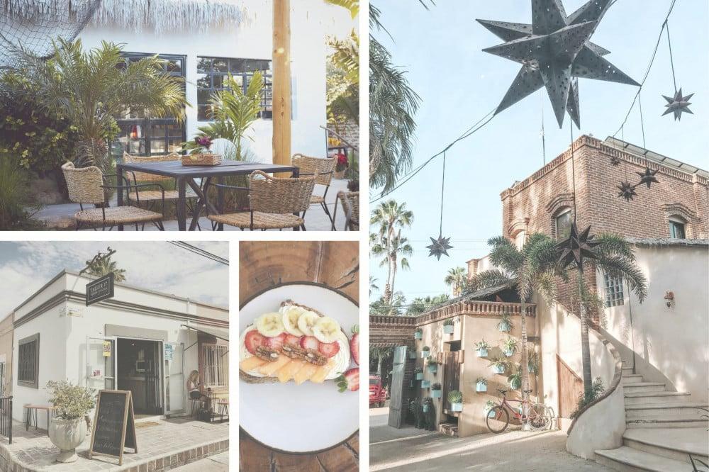 Best Coffee Shops in Baja - Todos Santos 2