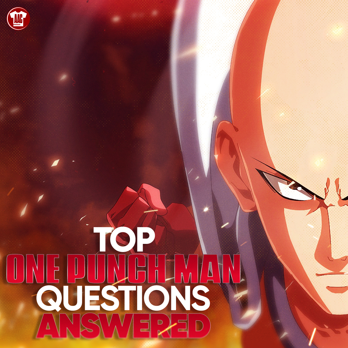 Top One Punch Man Questions Answered