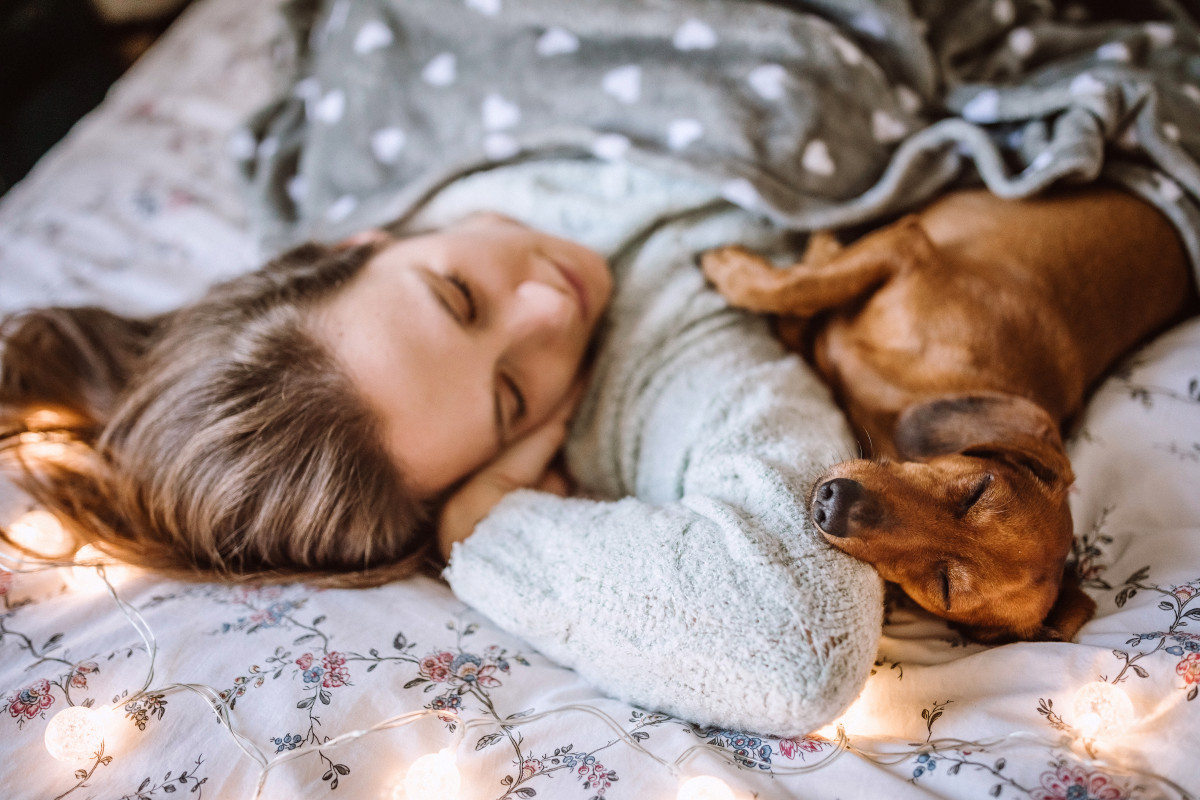 Dogs Trust give tips for dogs to get a good night's sleep!