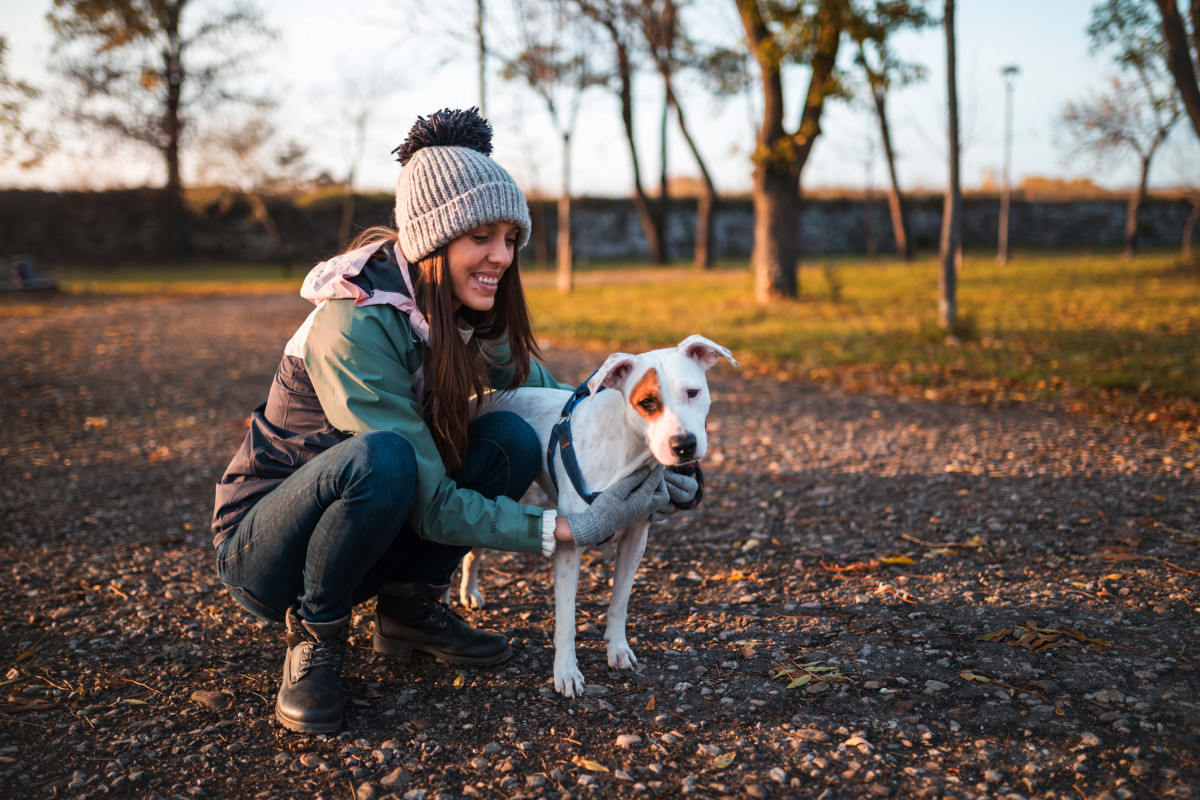 Walk Your Dog Month to beat those January Blues