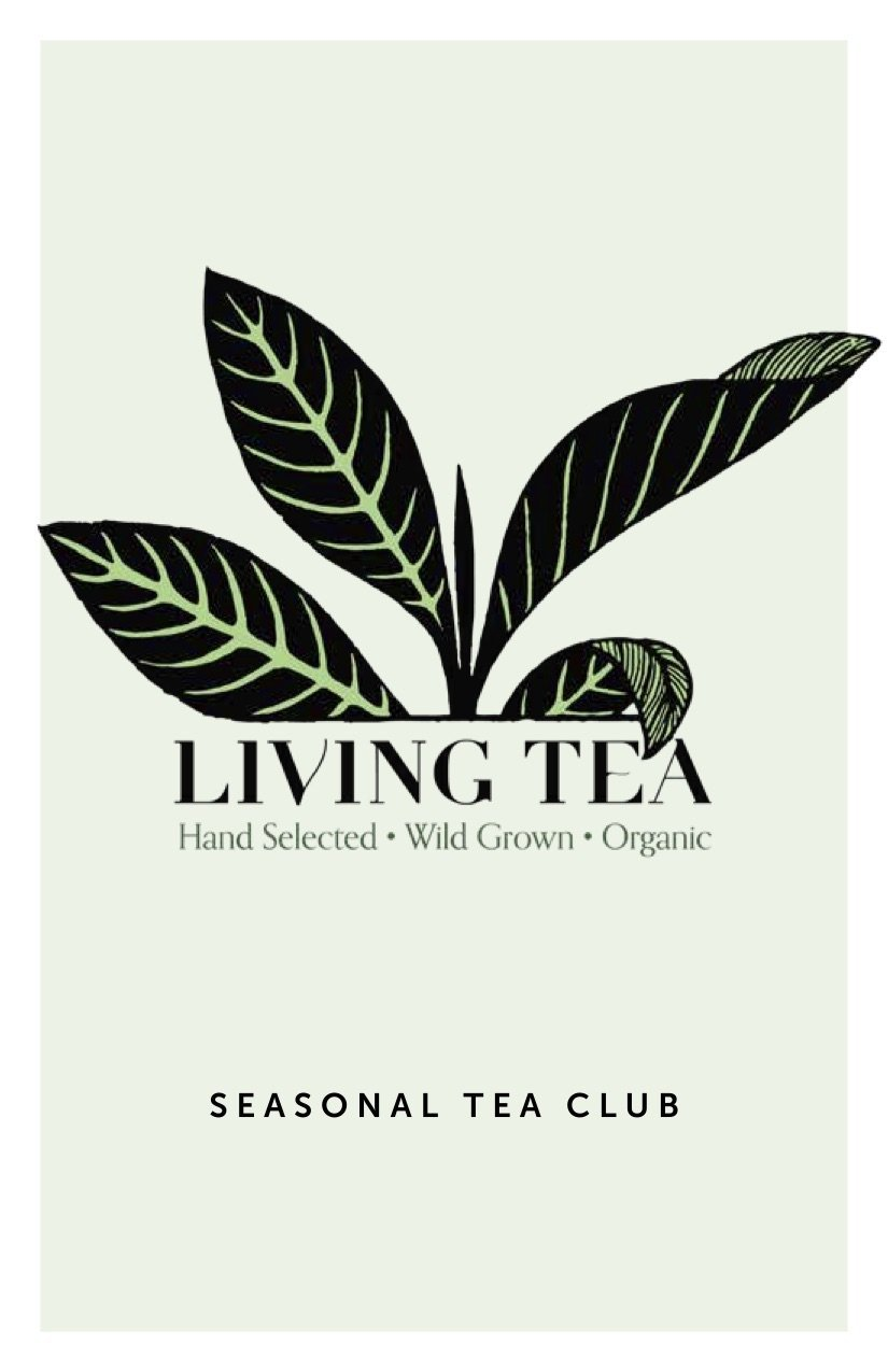 Living Tea Seasonal Tea Club Autumn 2019