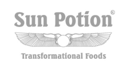 Sun Potion Journal Interview