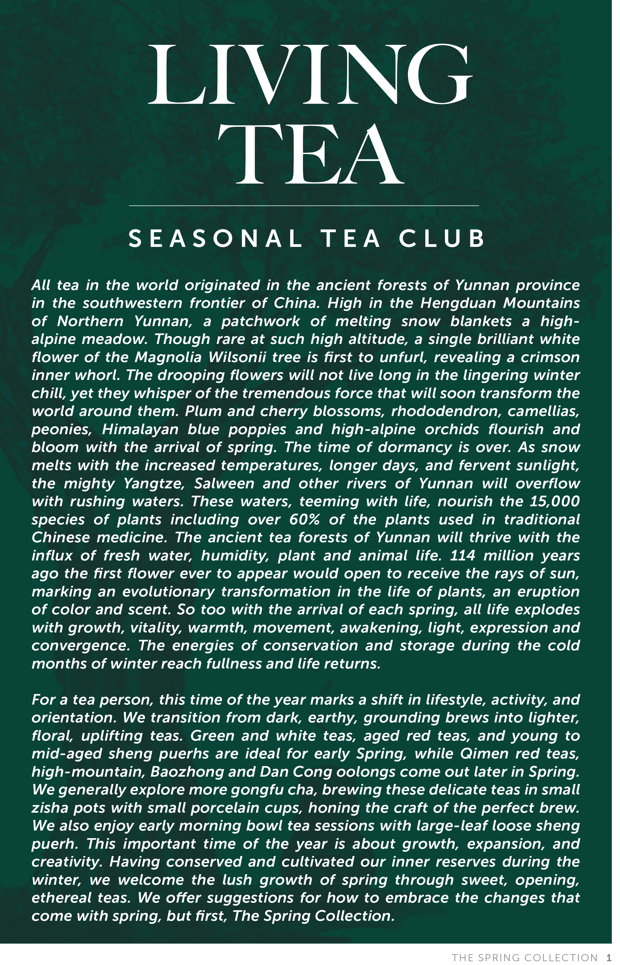 Living Tea Seasonal Tea Club Spring 2019