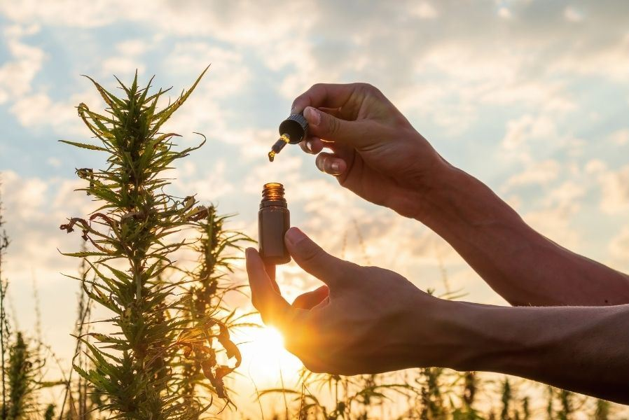 How Does CBD Oil Work for Pain Relief?