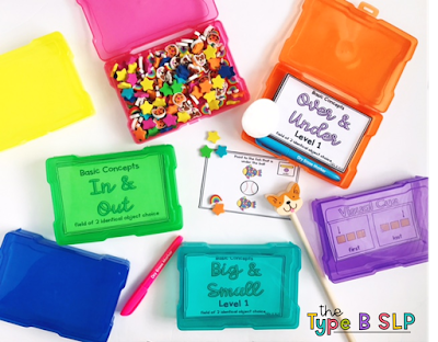 Picture Box Storage in Speech Therapy