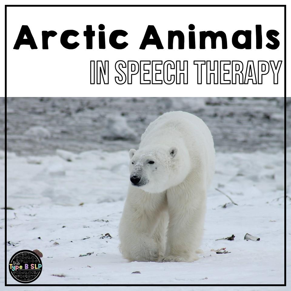Arctic Animals Theme in Speech Therapy