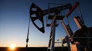 Hurricane Ida  is closing  crude output 1.74mln bpd
