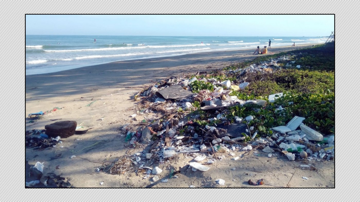 The Animal Bible:  When a lawyer finds his childhood beach buried in trash...