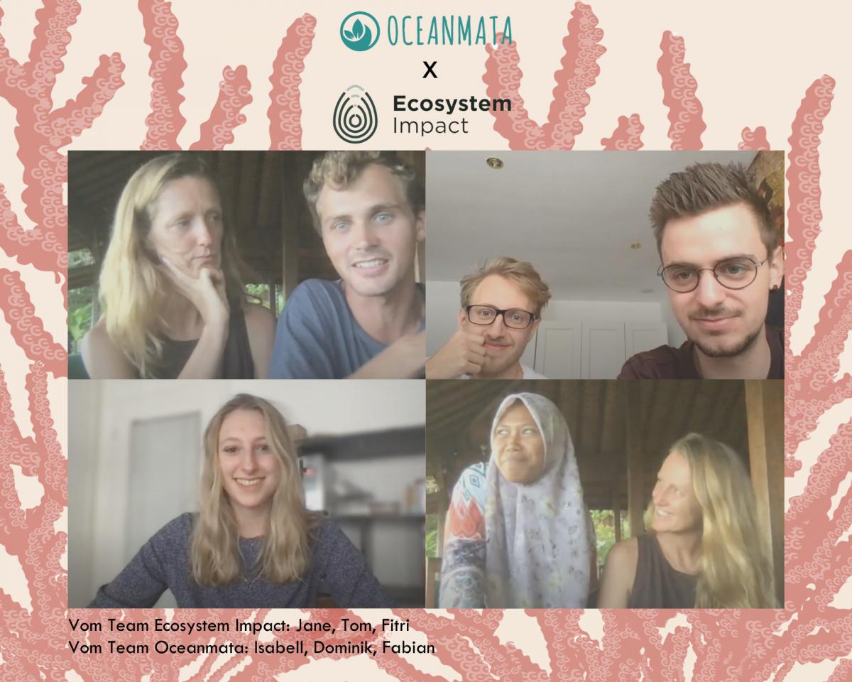 Team Oceanmata & EcosystemImpact