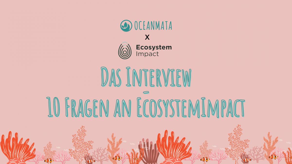 Zehn Fragen an EcosystemImpact
