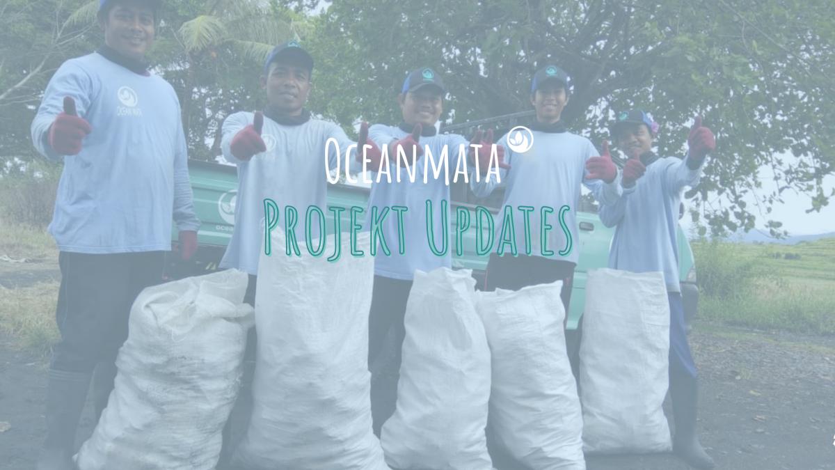 Die Oceanmata Projekte - das gibt es Neues!