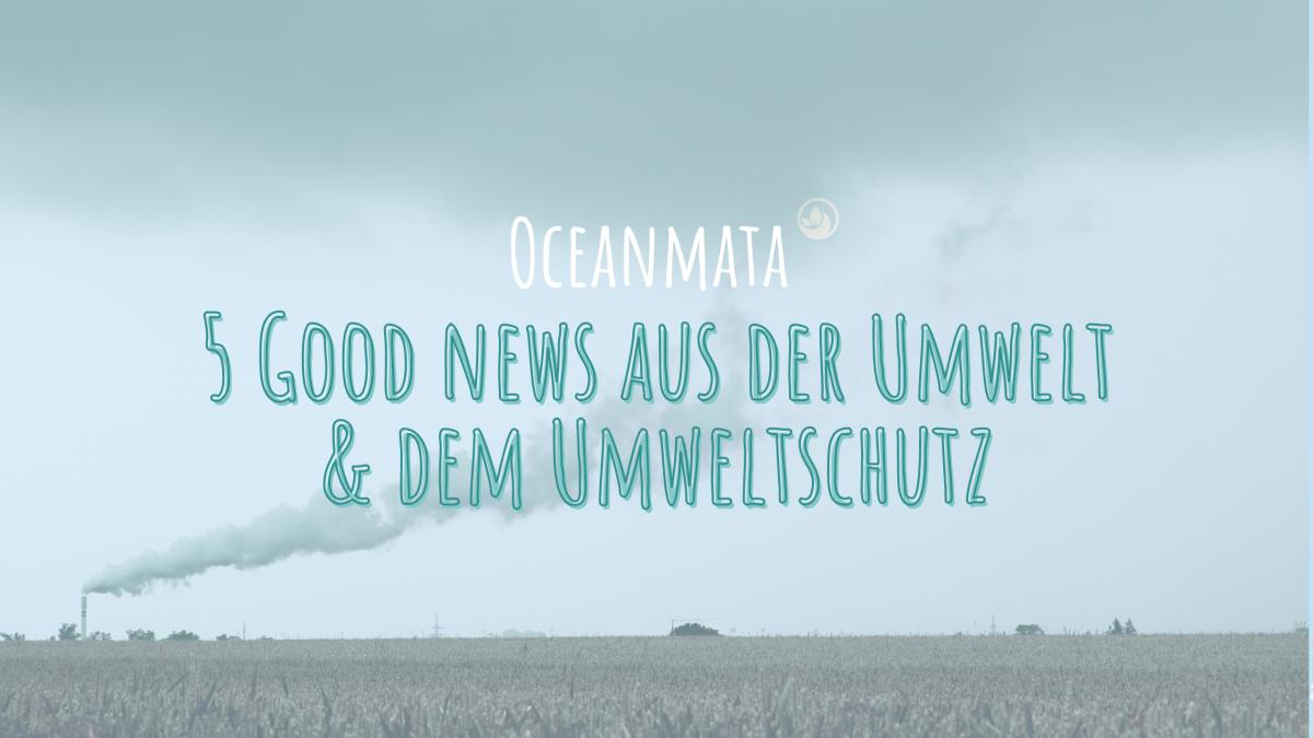 5 Good news aus der Umwelt & dem Umweltschutz