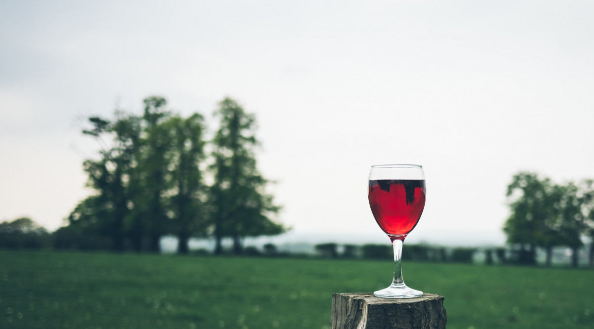 Drinking Alcohol: Is It Bad For You? How Much Is Safe?