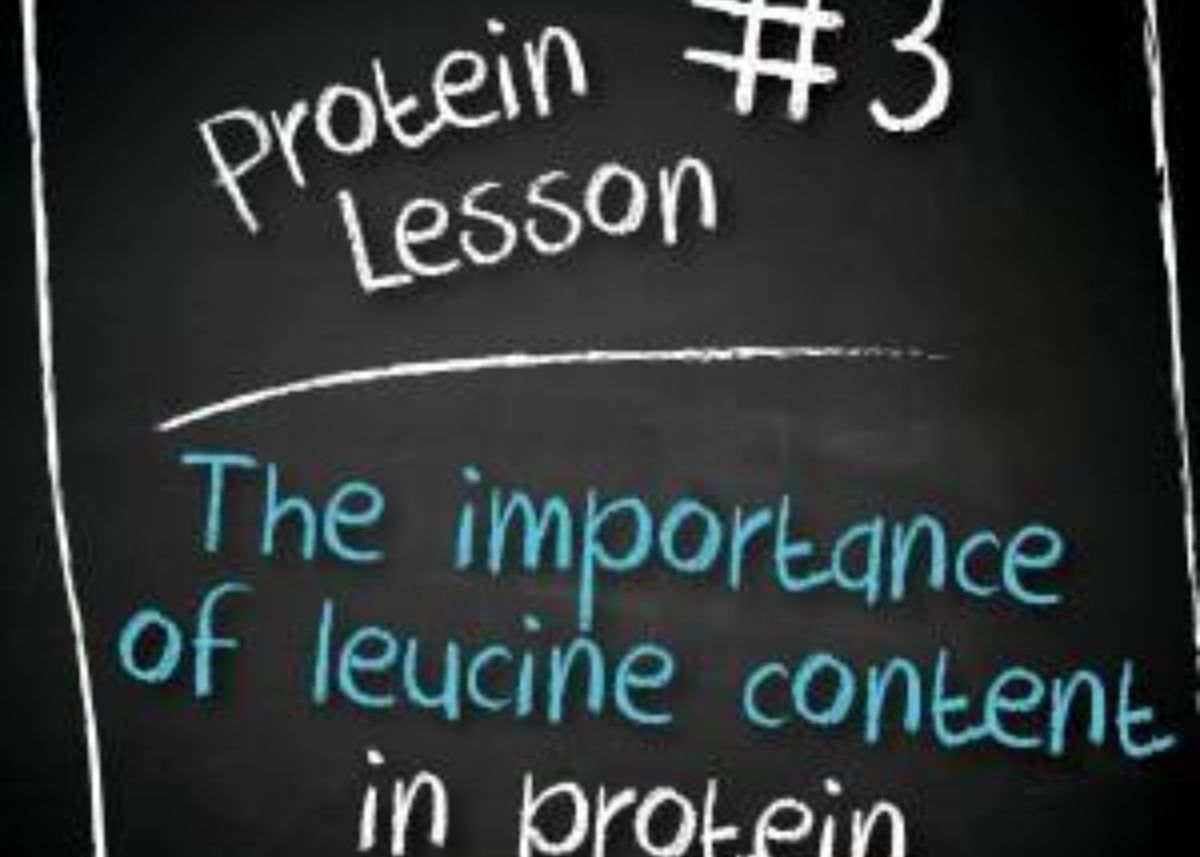 Leucine in Your Protein – What is it and why does it matter?