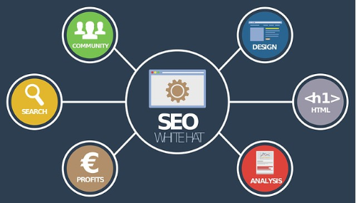 The Role of SEO in Today's Digital Climate