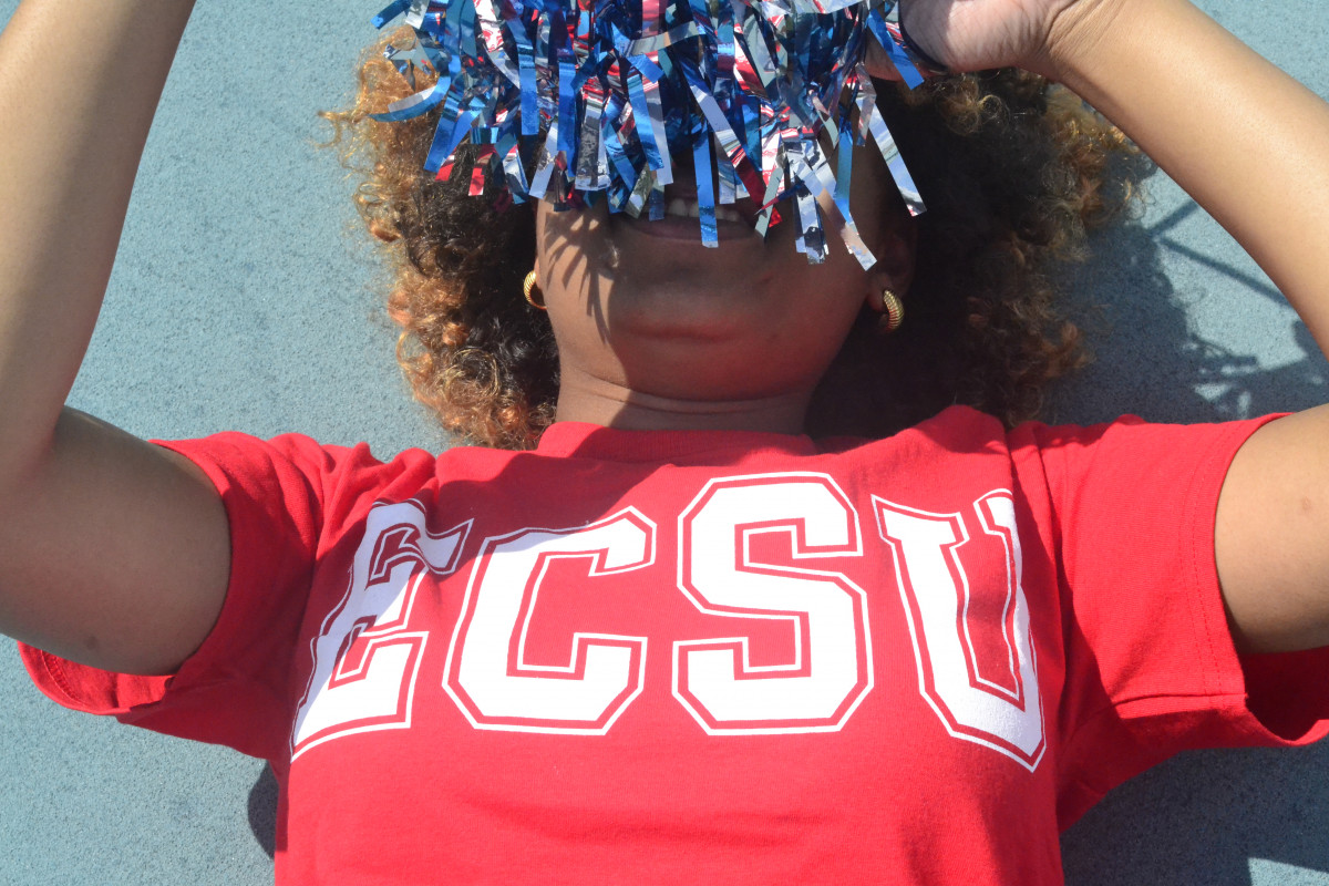 What is a Historically Black College and Universities (HBCU)?