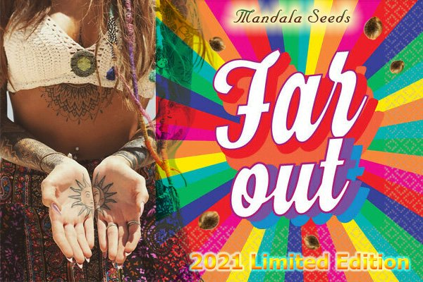 Far Out - New 2021 Limited Edition