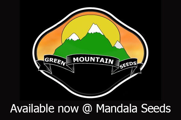 Green Mountain Seeds - Available at Mandala Seeds