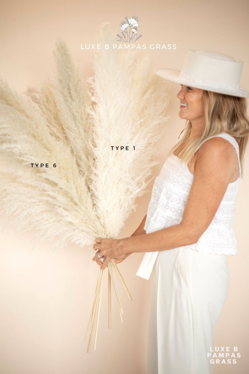 Luxe B large white pampas grass bulk