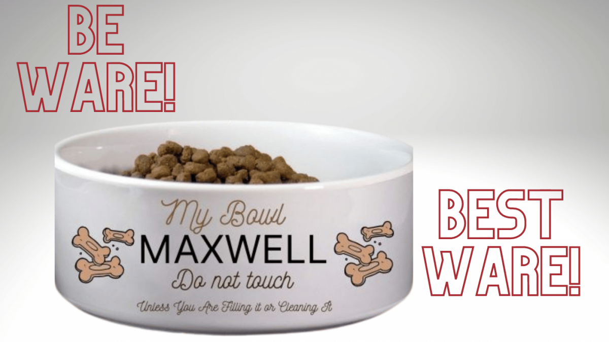 A Personalized Dog Bowl You Must Have -