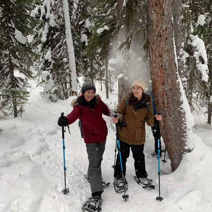 Where to Snowshoe in and Around Edmonton