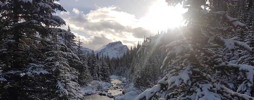 Helen Lake Trip Report - November 14th, 2016 - with video