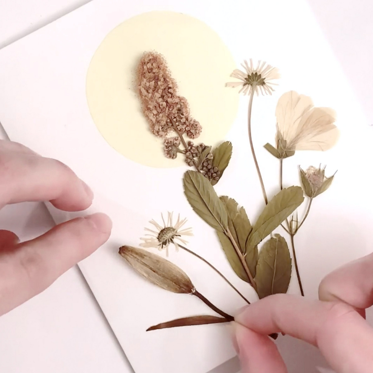 At Home with Wild & Gorgeous - Handmade Pressed Flower Cards