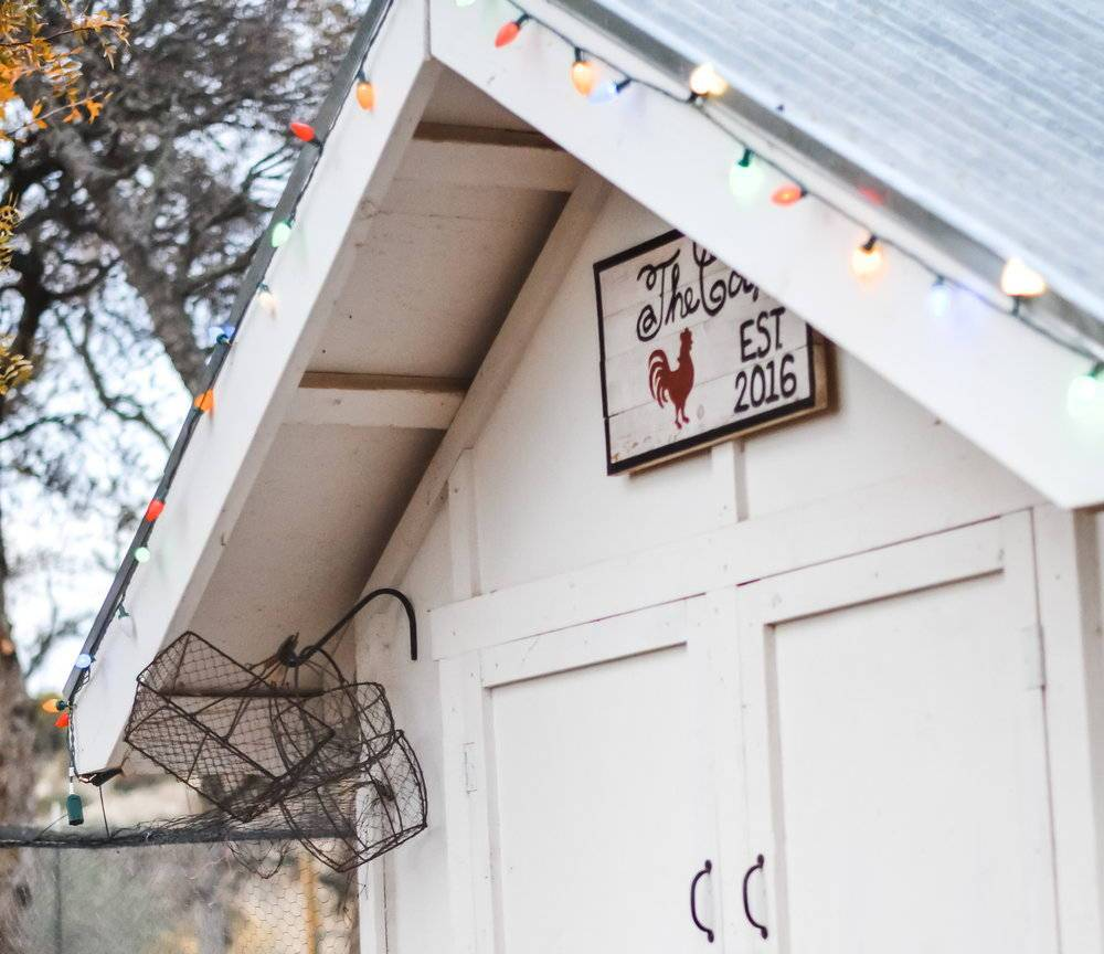 7 Holiday Coop Ideas