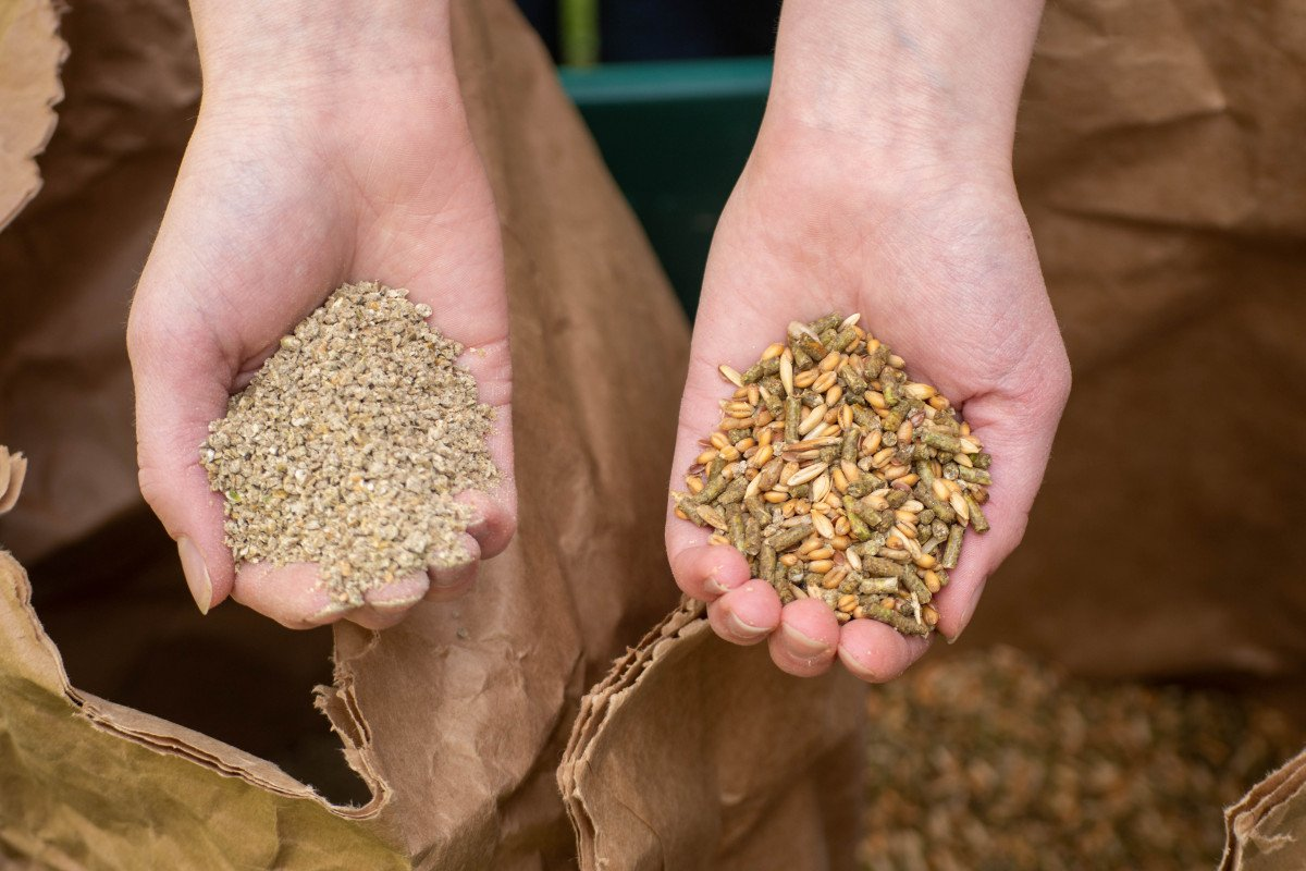 hands holding pellet feed and crumble feed