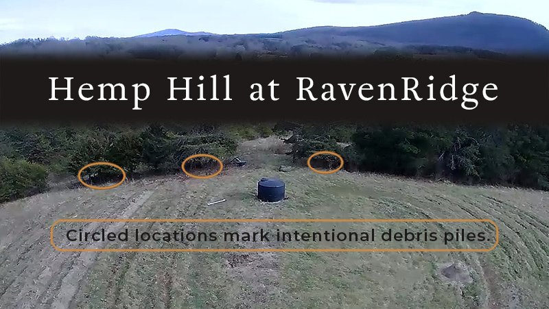 An overhead view of hemp hill, the area at RavenRidge where most of our hemp is grown. Pilot and Sauratown Mountains are visible in the distance.