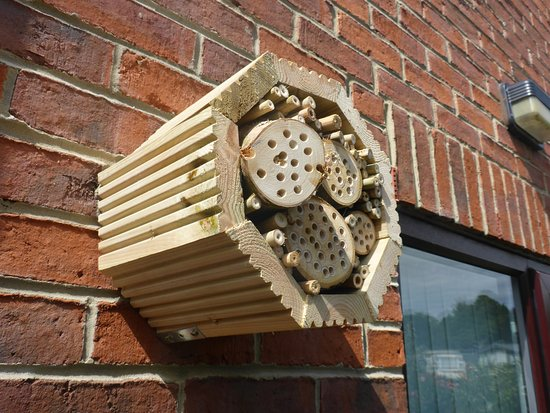 A creative hexagonal shaped insect motel mounted on the face of a brick building.