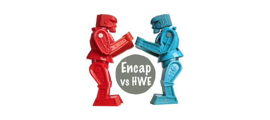 Encap Cleaning vs HWE
