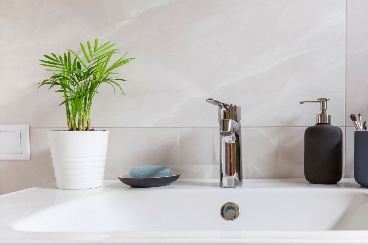 a photo of a Parlour Palm on a bathroom sink counter