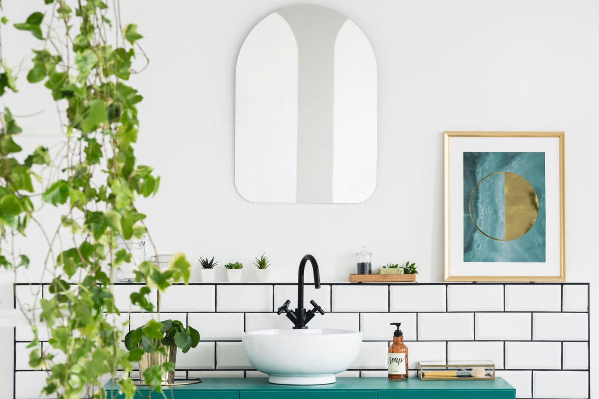 10 Perfect House Plants for Your Bathroom