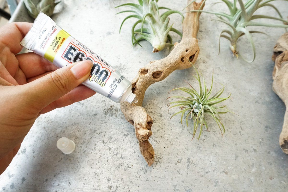 a photo of a person applying E6000 glue to grapevine mount