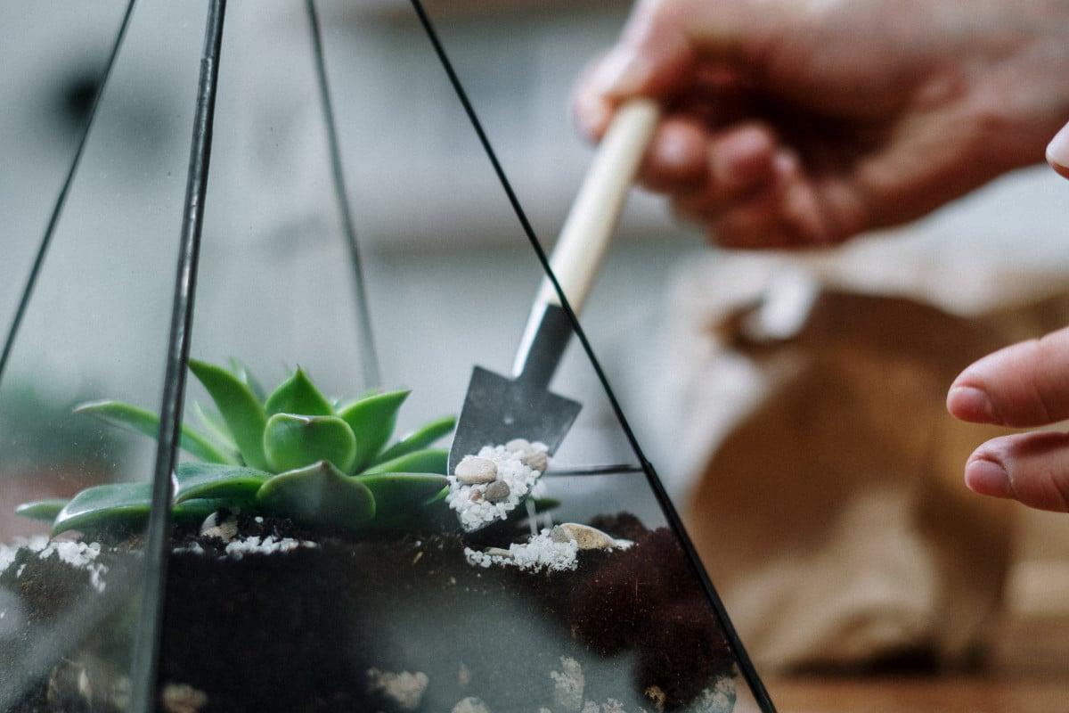 a person adding white gravel to a succulent terrarium